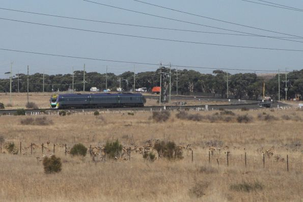 Solo VLocity train approaches Deer Park Junction on an up Geelong service