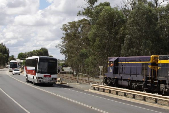 Pair of V/Line buses head back into Victoria at Moama, passing the Deniliquin rice train with T320 in the lead