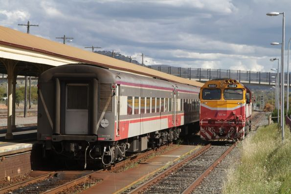 N464 running around the train at Albury station