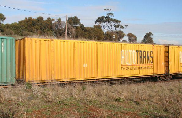 Autotrans 53' car container on a RRYY 5 pack articulated skeletal deck wagon