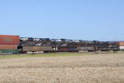 Five triple deck car carriers on a westbound Pacific National freight outside Adelaide