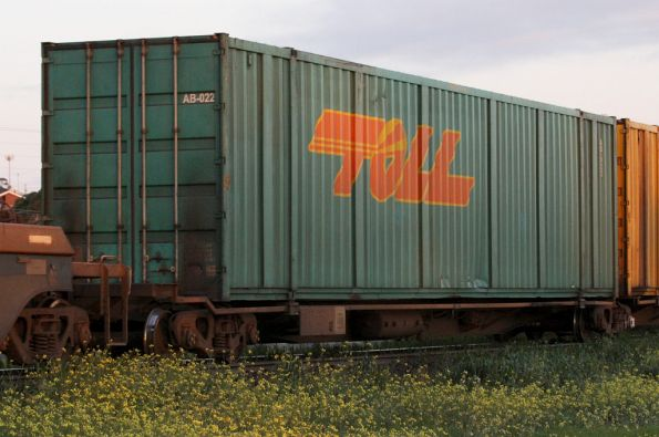 Toll car container on a RRYY wagon