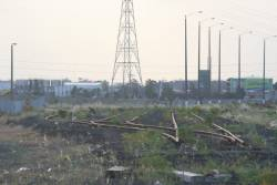 West from Todd Road, the marshalling yard