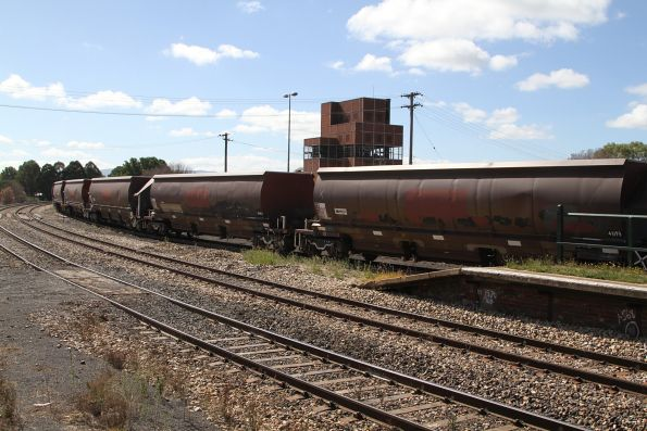 Ex-Pacific National coal wagons now owned by SSR, stabled in the yard at Bathurst station