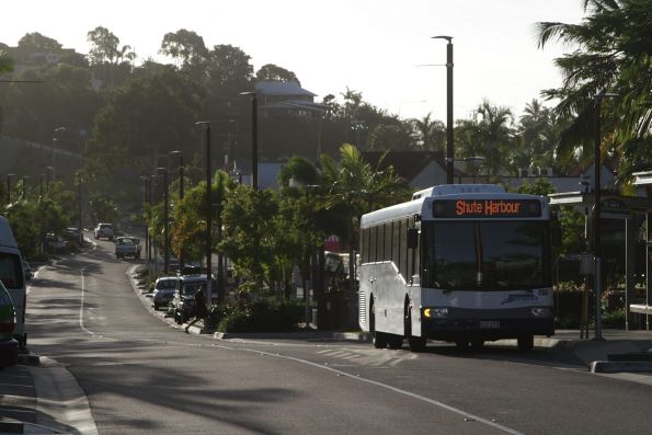 Whitsunday Transit #260 rego 412ITX in the main street of Airlie Beach